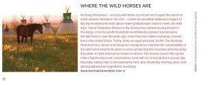 where the horses